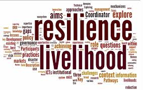 Networking facilitates resilience - word map