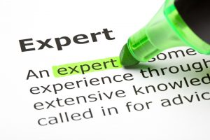 Definition of experts