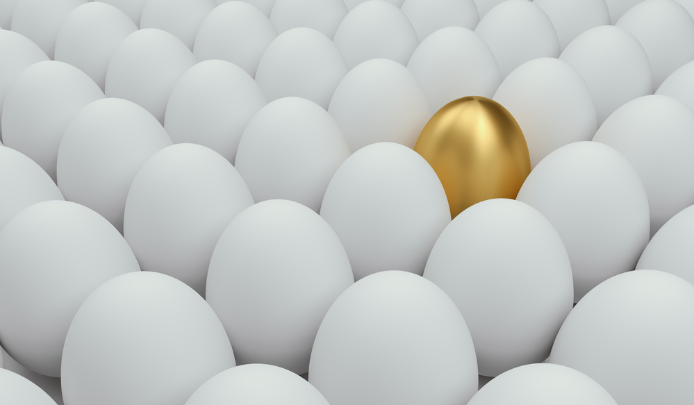 hiring for best fit misses the golden egg
